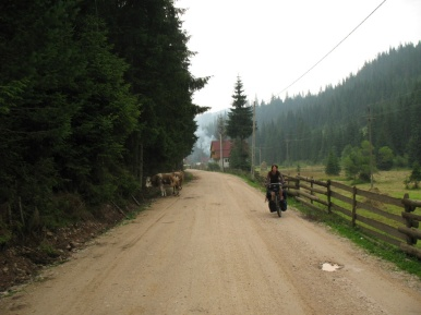 Magda und die Kuh.