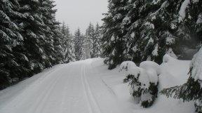 Schneel, Schnee, Schnee.