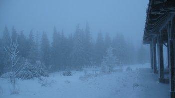 Noch immer Nebel.