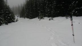 Meine Spur im Schnee.